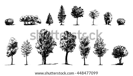 Tree Sketch drawn ink silhouettes of trees, hand drawing, set of trees and shrubs - stock vector