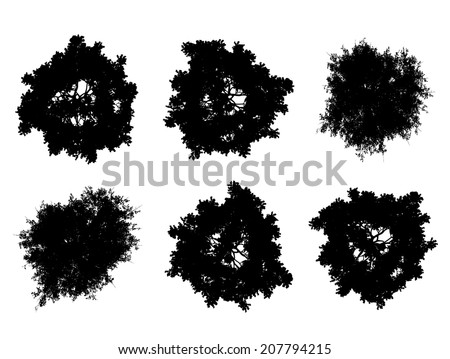 Tree top silhouettes - stock vector
