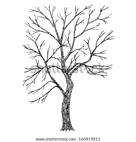 Tree. Vector. Sketched - stock vector