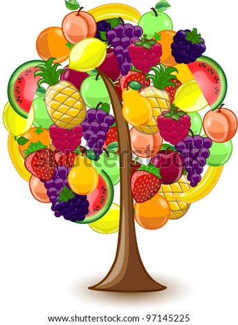 Tree with a variety of fruits, vector - stock vector
