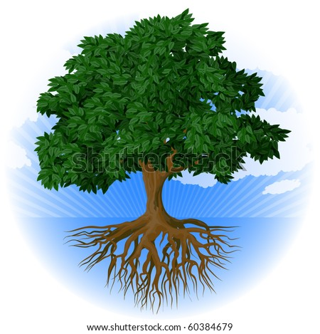 Tree with roots. Vector. - stock vector