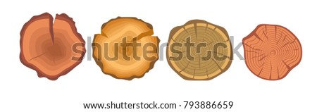 Tree wood year rings set. Vector isolated icons