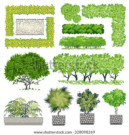 Trees and bush item for landscape design, vector icon - stock vector