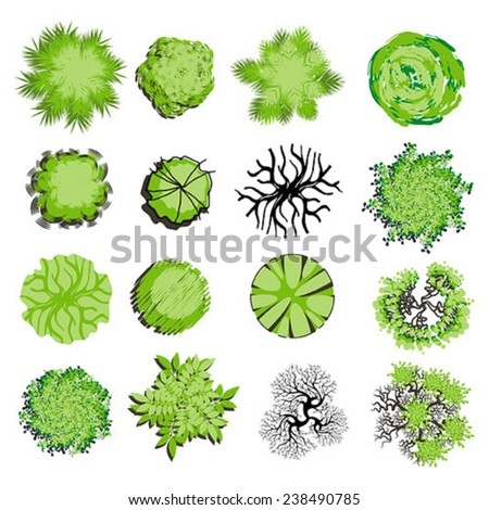 Trees and bush item top view for landscape design, vector icon - stock vector