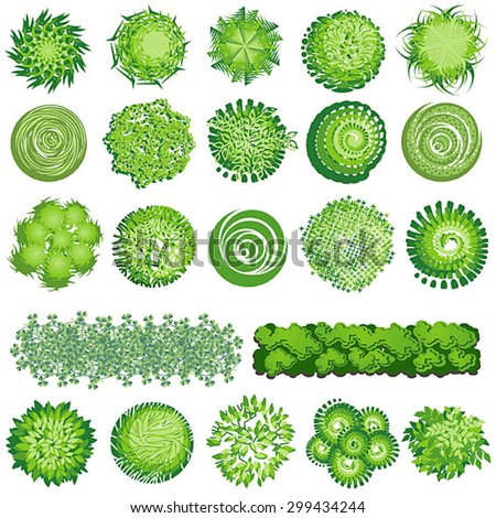 Trees And Bush Item Top View For Landscape Design Vector Icon
