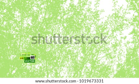 Trees background. forest. Vector