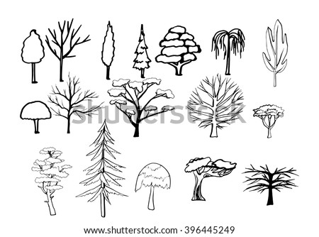 Tree lined stock photos images pictures shutterstock for Thin line tattoo artists near me