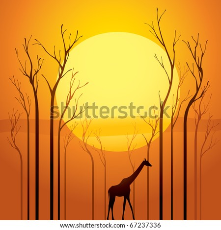 Trees went dried, a survivor walking through the tranquil sunset scene.  Symbolized global warming.