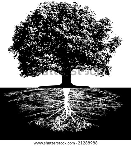 Trees with roots - stock vector