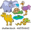 Tropical animals collection - vector illustration. - stock vector