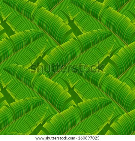 Tropical banana leaves seamless pattern, vector illustration.  - stock vector