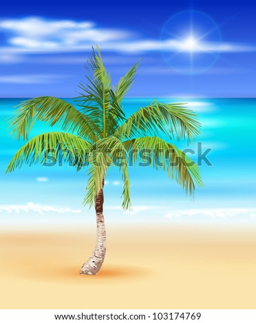 tropical beach - vector illustration of the palm tree & nature background / Eps10 - stock vector