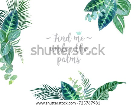Mint Leaves Png Vectors PSD and Clipart for Free