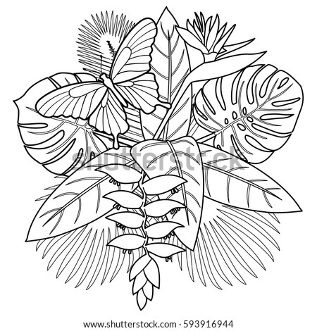 Tropical Bouquet Flowers Leaves Butterfly Coloring Stock Vector ...