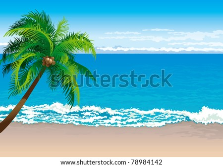 Tropical coast. Vector illustration  of coconut palm tree on a beach - Horizontal format - stock vector