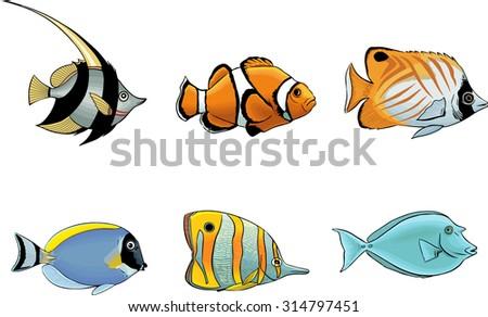 Tropical fish - stock vector