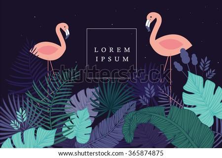 tropical/flamingo template vector/illustration - stock vector