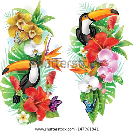 Tropical flowers, toucan and a butterflies - stock vector