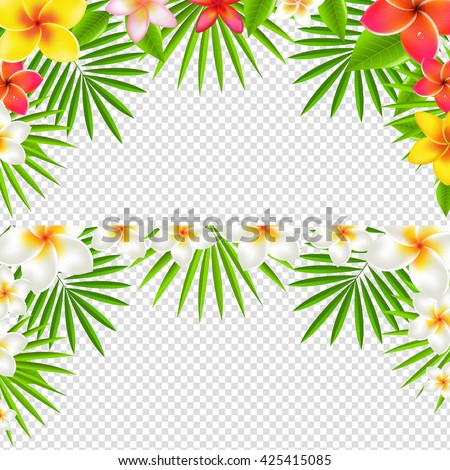 Tropical Frangipani Borders Set, Isolated on Transparent Background, With Gradient Mesh, Vector Illustration - stock vector