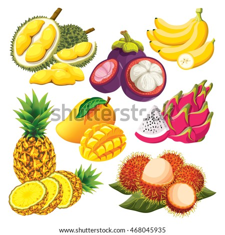 Tropical Fruit Isolated Vector