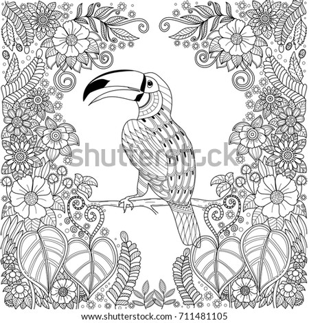 Tropical Hornbill Bird Zentangle In Jungle With Flowers For Adult Coloring Book Pagevector Illustration