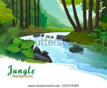 TROPICAL JUNGLE TREES AND FRESH WATER STREAM