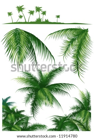 Tropical leaf set, vector illustration, EPS file included - stock vector