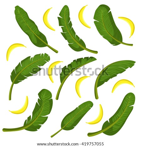 Tropical Leaves With Bananas Flat Bright Color Print In Realistic Vector Design On White Background - stock vector