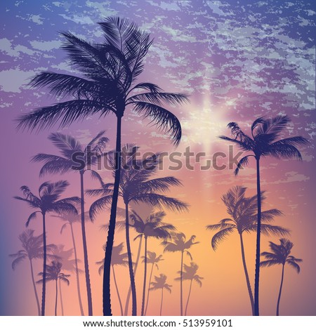 Tropical palm tree landscape and sunset sky. Vector illustration