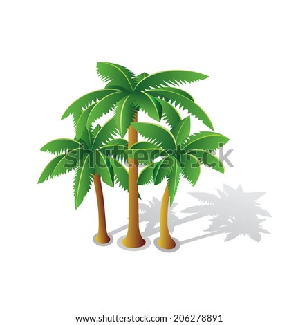 Tropical palms for web design and creative inspiration on white - stock vector