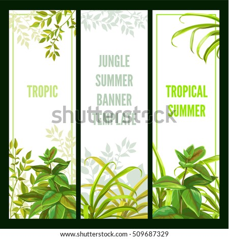 Tropical plant. Vertical banner set.