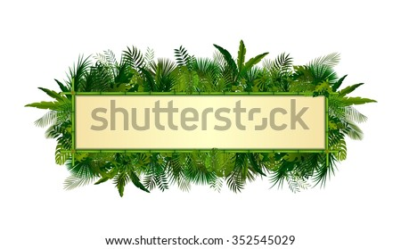 Tropical plants background. rectangle floral frame with space for text in concept bamboo .Vector - stock vector