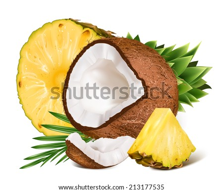 Tropical ripe fresh pineapples and coconuts with leaf. Vector illustration. - stock vector