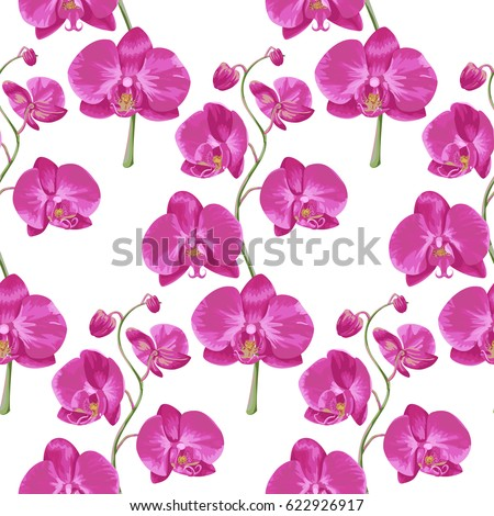 Tropical Seamless Pattern With Pink Orchids Flowers. Tropic Floral Wallpaper  Isolated On White Background. Amazing Ideas