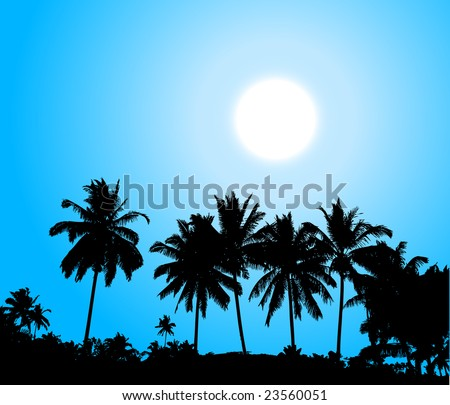 Tropical sunset, palm tree silhouette - stock vector
