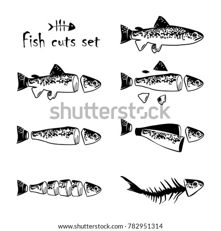 trout cuts diagram whole fish pan stock vector 782951314