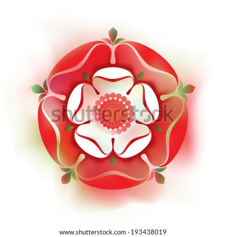 Tudor  Rose - illustration - watercolor style -  English Symbol - Combined the red rose of the house of Lancaster and the White rose of the house of York after the War of The Roses   - stock vector