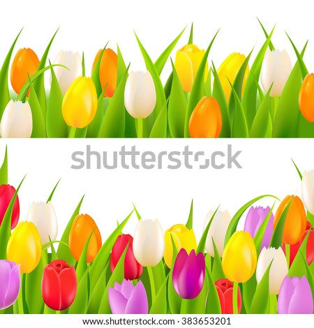 Tulip Border Set With Gradient Mesh, Vector Illustration - stock vector