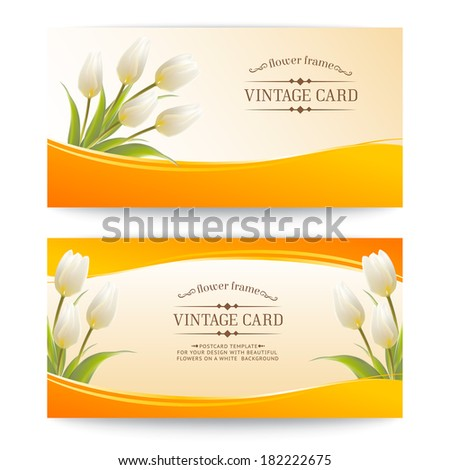 Tulip, floral background for your card. - stock vector