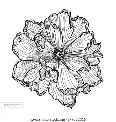 Tulip flower top view, line pattern. Vector artwork. Coloring book page for adult. Love bohemia concept for wedding invitation card, ticket, branding, boutique logo, label. Gift for girl and women - stock vector