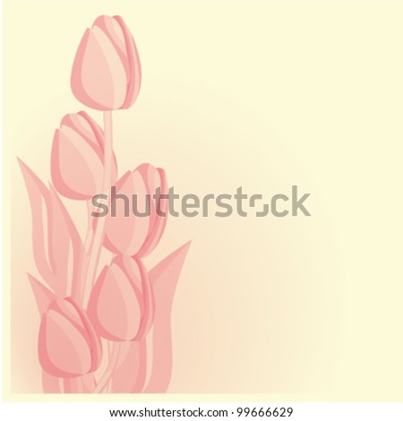 Tulips card background. eps 10 files - stock vector