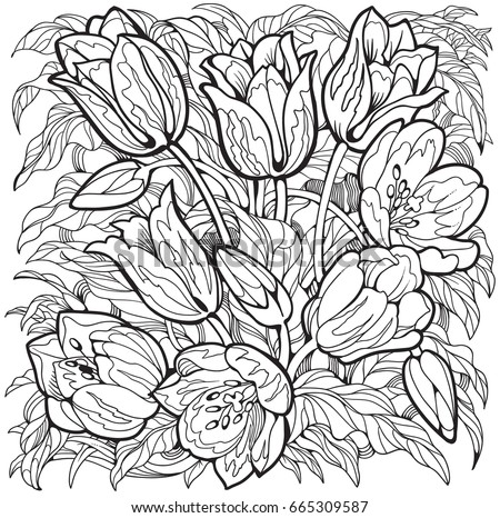 Tulips Line Art Drawing Flowers Coloring Page