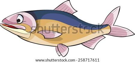 Tuna - stock vector