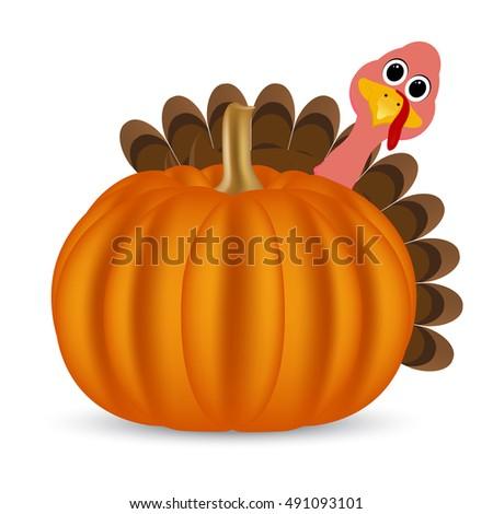 Turkey on Thanksgiving Day looks out from behind a pumpkin. Symbols Thanksgiving holiday, vector illustration