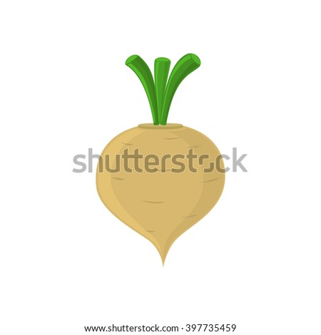 Turnip icon isolated on white background. Vector illustration. - stock vector