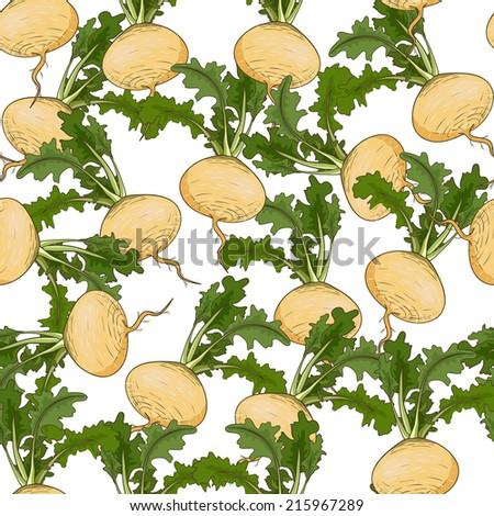 Turnip pattern - stock vector