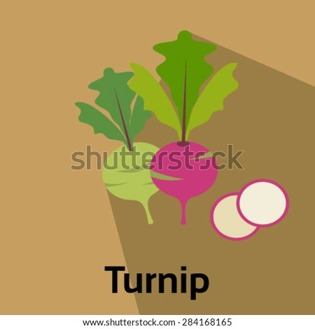 Turnip vector icon  - stock vector