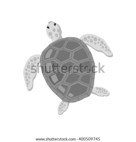 Turtle isolated on white background design flat. Tortoise with a big black carapace. The head and fins are covered with turtles speckled pattern. Creature  wildlife of wold world. Vector illustration - stock vector