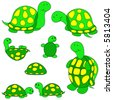 Turtle vector, eight different variations. - stock vector