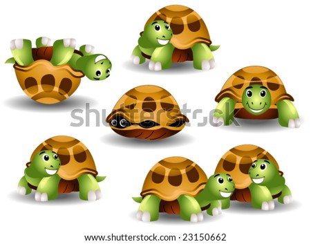 Turtles - Vector